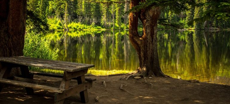 A lake and a bench